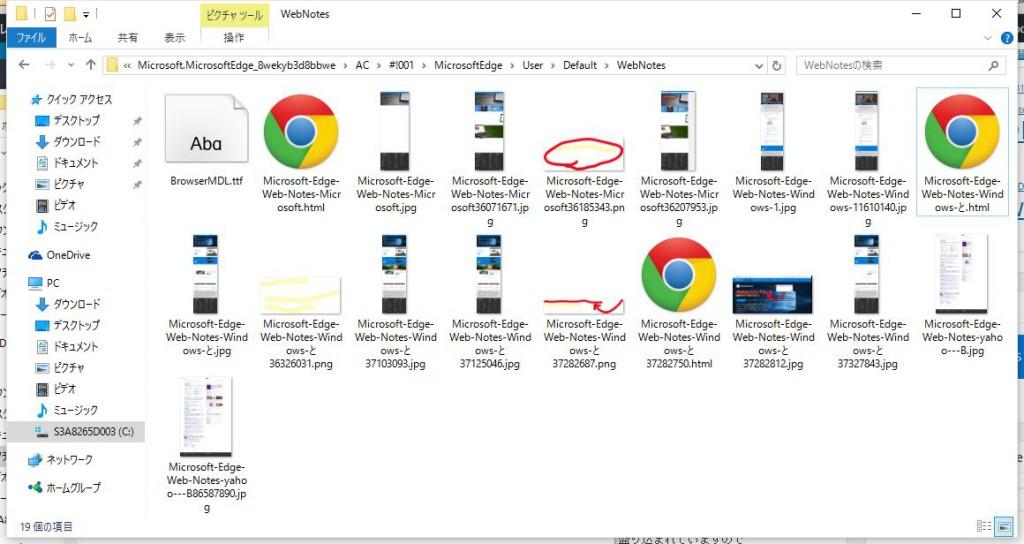 Microsoft Edge Webノート保尊場所